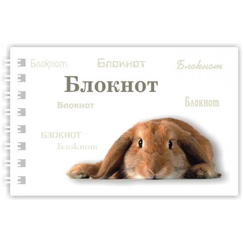 """Блокнот """"Кролик"""""""