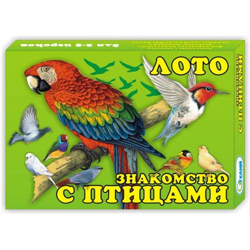 "Лото ""Знакомство с птицами"""